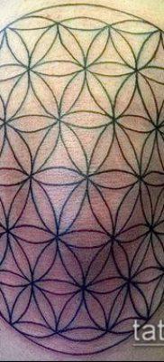 фото тату цветок жизни (Tattoo Flower of Li) (значение) – пример рисунка – 018 tatufoto.com