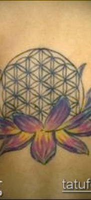 фото тату цветок жизни (Tattoo Flower of Li) (значение) – пример рисунка – 042 tatufoto.com