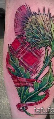 фото тату чертополох (значение) – пример интересного рисунка тату – 013 tatufoto.com
