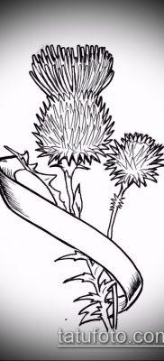фото тату чертополох (значение) – пример интересного рисунка тату – 026 tatufoto.com