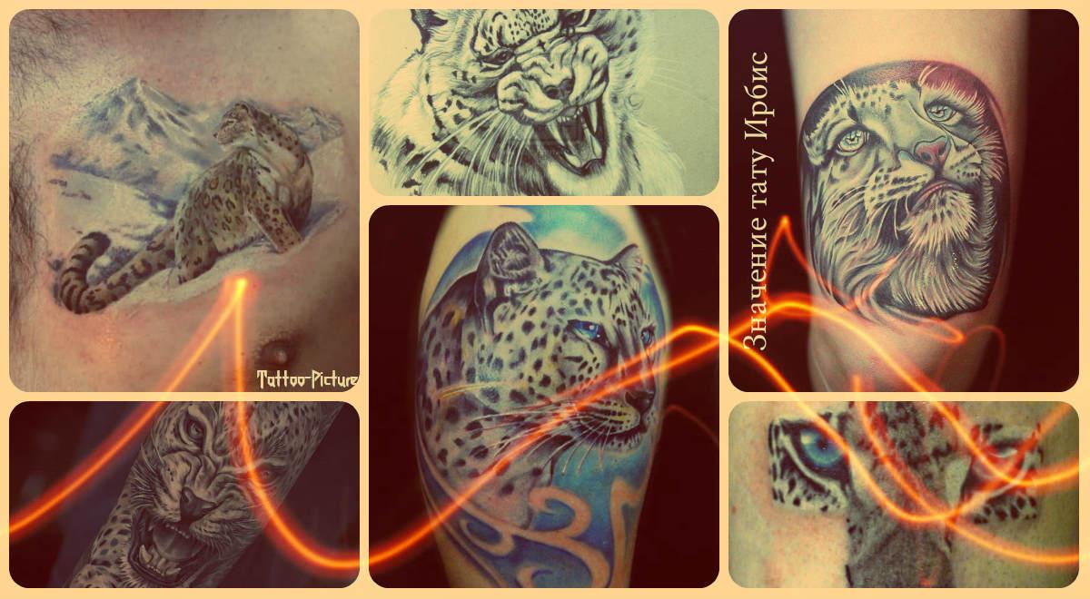 Значение тату ирбис - фото готовых татуировок - рисунки