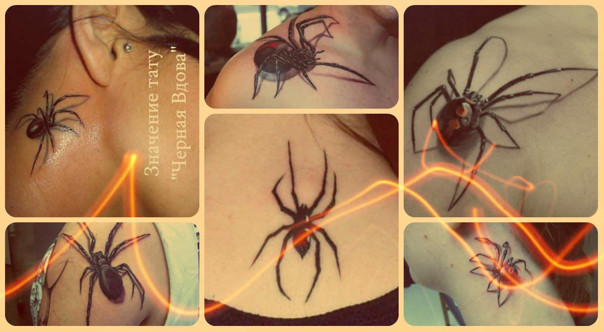 Значение тату Черная Вдова - фото татуировок - рисунки