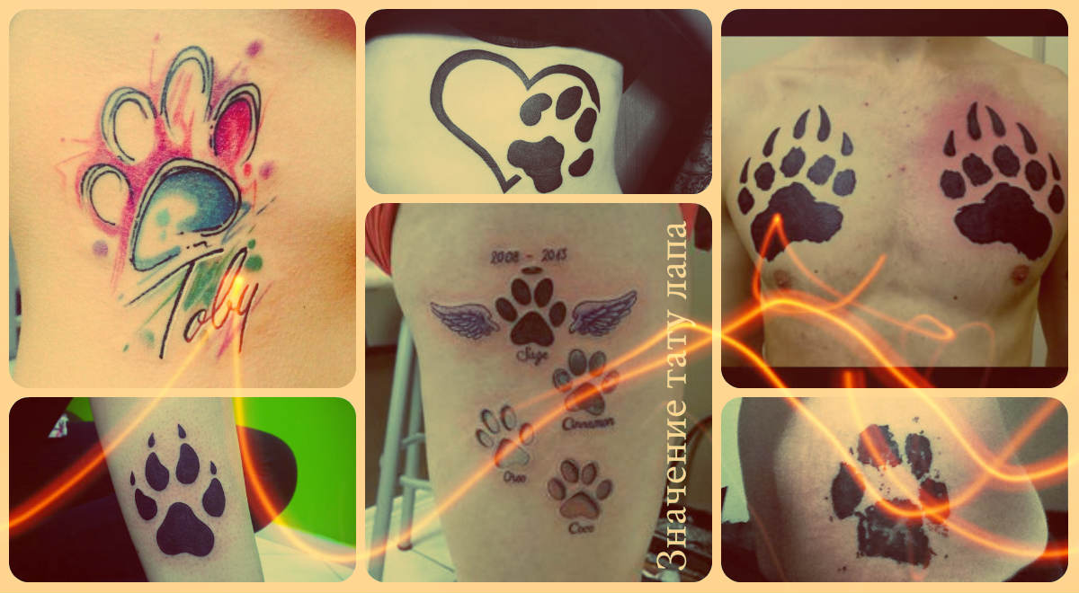 Значение тату лапа - фото примеры готовых татуировок - рисунки