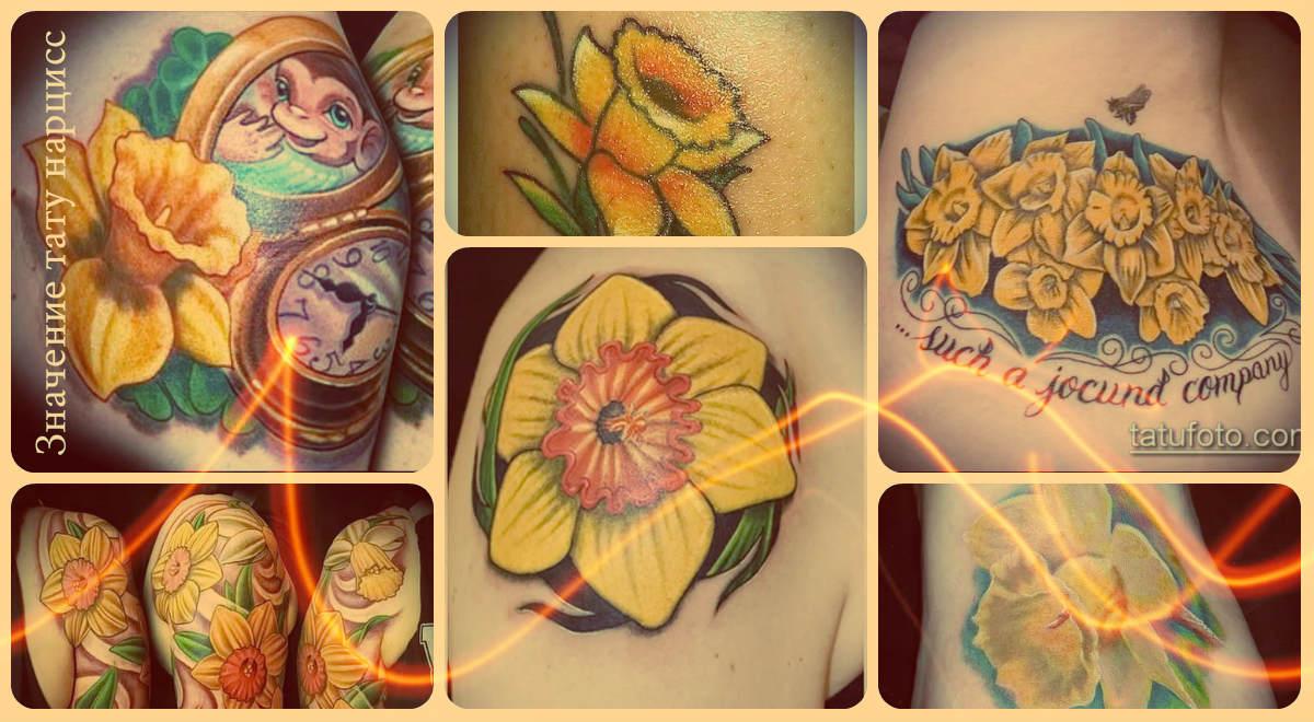 Значение тату нарцисс - фото примеры рисунков татуировки