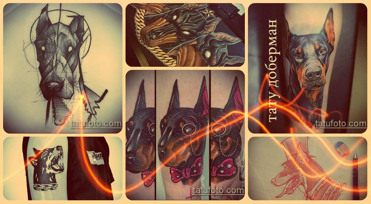 Фото тату доберман - классные примеры готовых тату рисунков