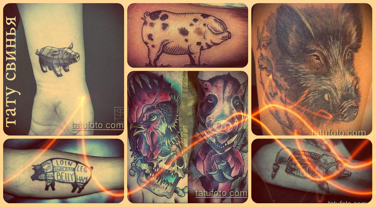 Значение тату свинья - фото примеры интересных рисунков