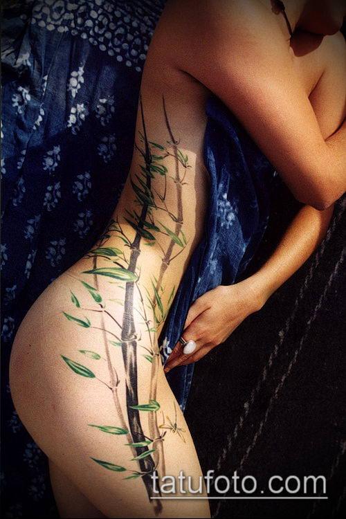 ТАТУИРОВКА БАМБУК №957 - интересный вариант рисунка, который хорошо можно использовать для переделки и нанесения как татуировка бамбук
