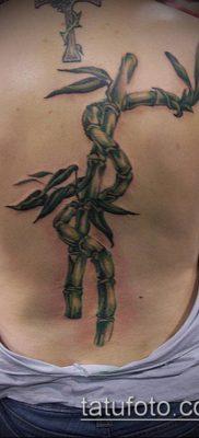 ТАТУИРОВКА БАМБУК №743 – интересный вариант рисунка, который удачно можно использовать для переработки и нанесения как татуировка бамбук