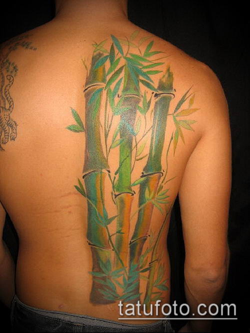 ТАТУИРОВКА БАМБУК №164 - крутой вариант рисунка, который успешно можно использовать для переделки и нанесения как татуировка бамбук
