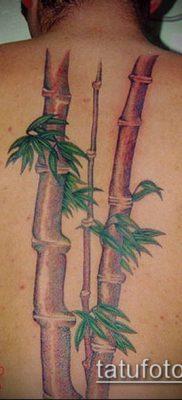 ТАТУИРОВКА БАМБУК №20 – классный вариант рисунка, который хорошо можно использовать для преобразования и нанесения как татуировка бамбук