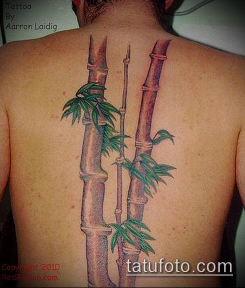 ТАТУИРОВКА БАМБУК №20 - классный вариант рисунка, который хорошо можно использовать для преобразования и нанесения как татуировка бамбук