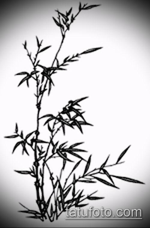 ТАТУИРОВКА БАМБУК №462 - крутой вариант рисунка, который легко можно использовать для переделки и нанесения как татуировка бамбук на руке