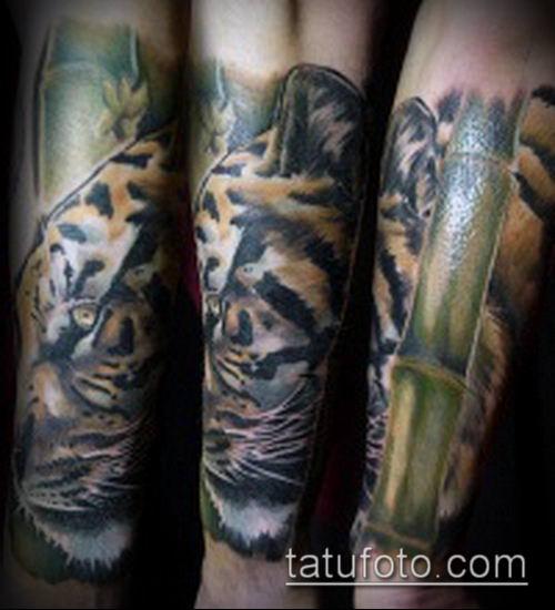 ТАТУИРОВКА БАМБУК №180 - классный вариант рисунка, который удачно можно использовать для переделки и нанесения как татуировка бамбук