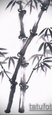 ТАТУИРОВКА БАМБУК №687 – классный вариант рисунка, который легко можно использовать для преобразования и нанесения как татуировка бамбук