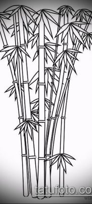 ТАТУИРОВКА БАМБУК №656 – достойный вариант рисунка, который успешно можно использовать для переделки и нанесения как татуировка бамбук