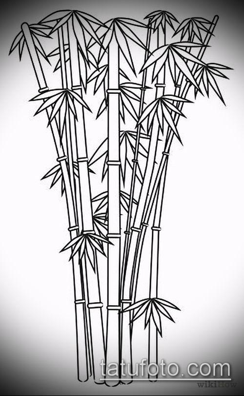 ТАТУИРОВКА БАМБУК №656 - достойный вариант рисунка, который успешно можно использовать для переделки и нанесения как татуировка бамбук