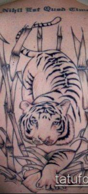 ТАТУИРОВКА БАМБУК №305 – крутой вариант рисунка, который удачно можно использовать для преобразования и нанесения как татуировка бамбук