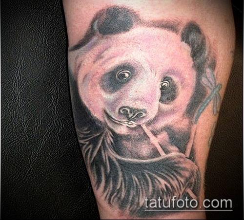 ТАТУИРОВКА БАМБУК №35 - крутой вариант рисунка, который хорошо можно использовать для доработки и нанесения как татуировка бамбук на руке