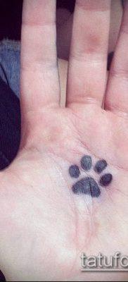 фото ТАТУИРОВКА ЛАПА (Tattoo) (значение) – пример рисунка – 042 tatufoto.com