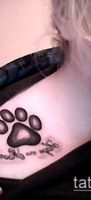 ТАТУИРОВКА ЛАПА №663 – достойный вариант рисунка, который удачно можно использовать для переработки и нанесения как татуировка лапа панды