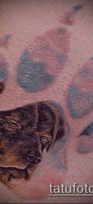 ТАТУИРОВКА ЛАПА №454 – эксклюзивный вариант рисунка, который легко можно использовать для переделки и нанесения как тату лапа льва