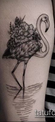 фото ТАТУИРОВКА ФЛАМИНГО (Tattoo) (значение) – пример рисунка – 028 tatufoto.com