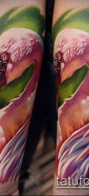фото ТАТУИРОВКА ФЛАМИНГО (Tattoo) (значение) – пример рисунка – 057 tatufoto.com