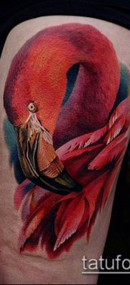фото ТАТУИРОВКА ФЛАМИНГО (Tattoo) (значение) – пример рисунка – 058 tatufoto.com