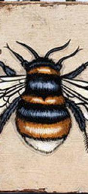 ТАТУИРОВКА ШМЕЛЬ №459 – крутой вариант рисунка, который хорошо можно использовать для переделки и нанесения как татуировка шмель на пальце