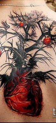 ТАТУИРОВКА ЯБЛОНЯ №42 – классный вариант рисунка, который удачно можно использовать для доработки и нанесения как тату яблоня