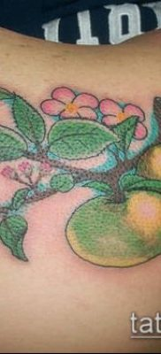 ТАТУИРОВКА ЯБЛОНЯ №781 – интересный вариант рисунка, который легко можно использовать для переработки и нанесения как тату яблоня