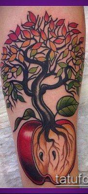 ТАТУИРОВКА ЯБЛОНЯ №725 – эксклюзивный вариант рисунка, который легко можно использовать для переработки и нанесения как татуировка яблоня