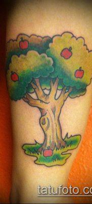 ТАТУИРОВКА ЯБЛОНЯ №191 – достойный вариант рисунка, который легко можно использовать для преобразования и нанесения как тату яблоня