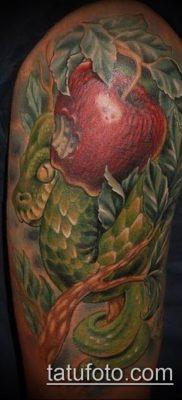ТАТУИРОВКА ЯБЛОНЯ №932 – эксклюзивный вариант рисунка, который удачно можно использовать для переработки и нанесения как татуировка яблоня
