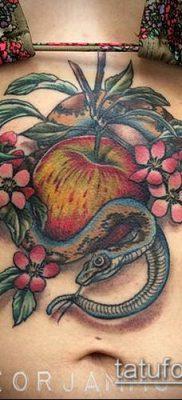 ТАТУИРОВКА ЯБЛОНЯ №553 – интересный вариант рисунка, который легко можно использовать для доработки и нанесения как татуировка яблоня