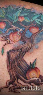 ТАТУИРОВКА ЯБЛОНЯ №889 – достойный вариант рисунка, который успешно можно использовать для переработки и нанесения как тату яблоня