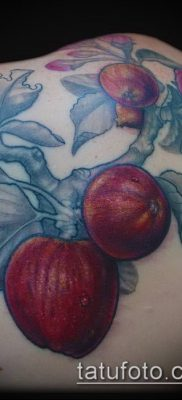 ТАТУИРОВКА ЯБЛОНЯ №198 – эксклюзивный вариант рисунка, который хорошо можно использовать для переработки и нанесения как тату яблоня