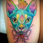ЦВЕТНЫЕ ТАТУИРОВКИ №866 - классный вариант рисунка, который успешно можно использовать для преобразования и нанесения как цветные татуировки на груди