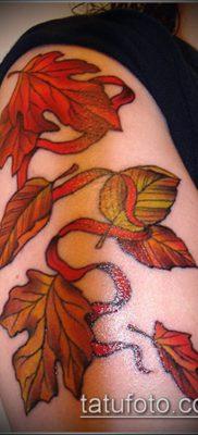 дубовые листья тату №716 – эксклюзивный вариант рисунка, который удачно можно использовать для переделки и нанесения как листья дуба тату