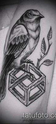 тату гравюра №624 – прикольный вариант рисунка, который удачно можно использовать для доработки и нанесения как тату гравюра на руке