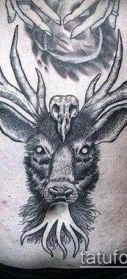 тату гравюра №242 – интересный вариант рисунка, который удачно можно использовать для доработки и нанесения как тату гравюра рембрандта