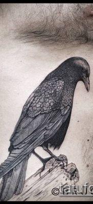 тату гравюра №455 – достойный вариант рисунка, который успешно можно использовать для переработки и нанесения как тату гравюра на руку