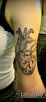 тату гравюра №36 – прикольный вариант рисунка, который хорошо можно использовать для переработки и нанесения как Engraving tattoo