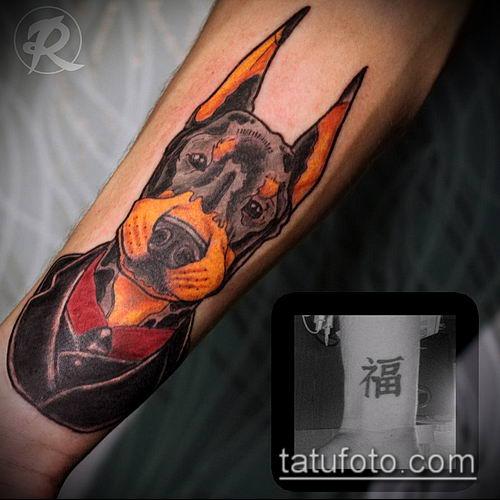 тату доберман №717 - крутой вариант рисунка, который удачно можно использовать для переработки и нанесения как тату доберман запястье