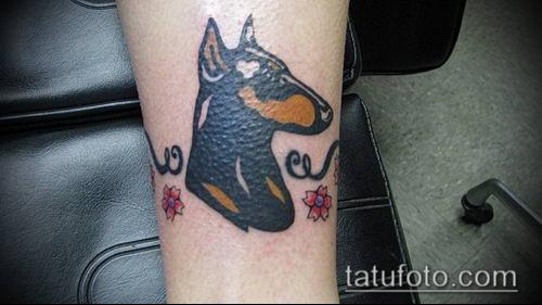 тату доберман №666 - уникальный вариант рисунка, который успешно можно использовать для доработки и нанесения как тату доберман в костюме