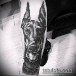тату доберман №297 - крутой вариант рисунка, который легко можно использовать для доработки и нанесения как тату доберман оскал