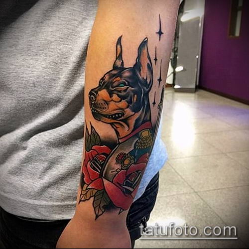 тату доберман №438 - эксклюзивный вариант рисунка, который легко можно использовать для доработки и нанесения как тату доберман на лопатке