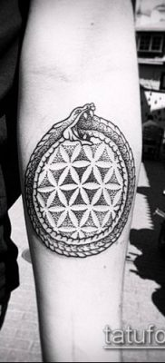 фото тату дотворк (tattoo) (значение) – пример рисунка – 145 tatufoto.com