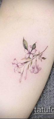 тату жасмин №883 – классный вариант рисунка, который хорошо можно использовать для переделки и нанесения как тату жасмин цветок