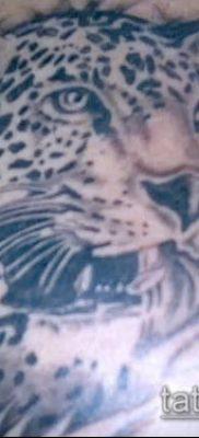 тату ирбис №308 – достойный вариант рисунка, который легко можно использовать для доработки и нанесения как тату ирбис на спине